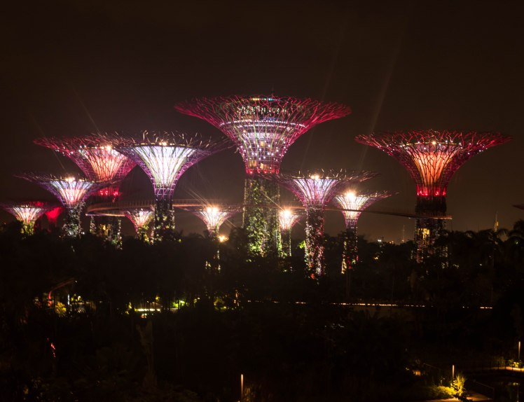 Gardens by the Bay - - 66