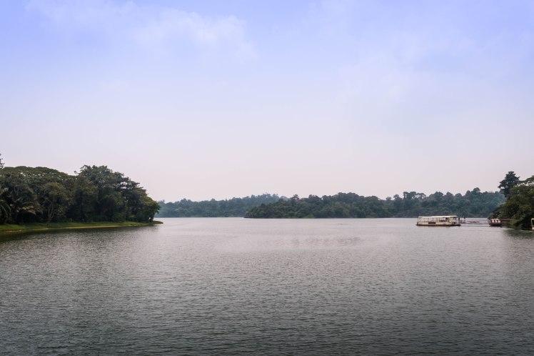 River Safari - 24