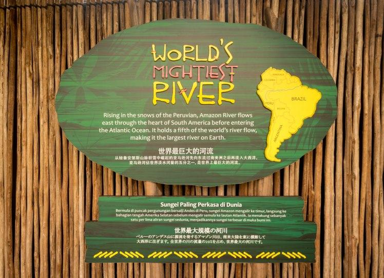 River Safari - 26